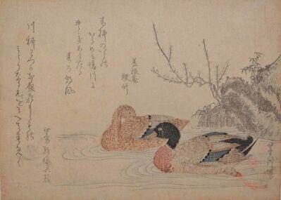Hishikawa Sori III, 'Ducks at Kamo River in Spring Wind', ca. 1810