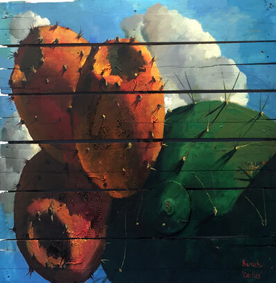Ilan Baruch, 'Cactus', 1974-now