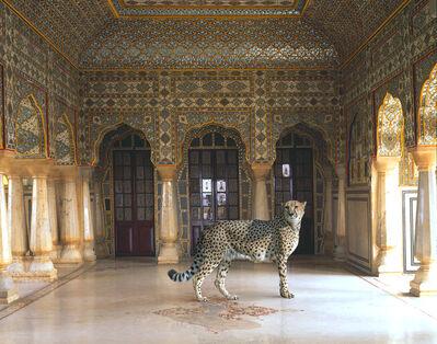 Karen Knorr, 'The Return of the Hunter, Jaipur Palace, Jaipur'
