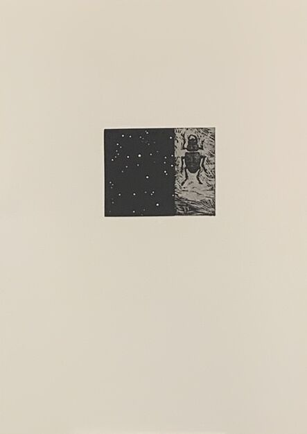 Vija Celmins, 'Night sky/Beetle', 1990