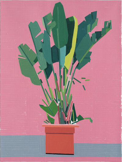 Guy Yanai, 'Palermo Plant', 2019