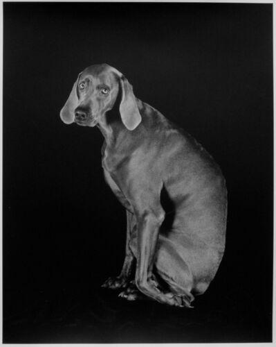 William Wegman, 'Dog Leg', 1994