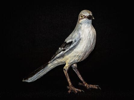 Nall, 'Mockingbird', 2015