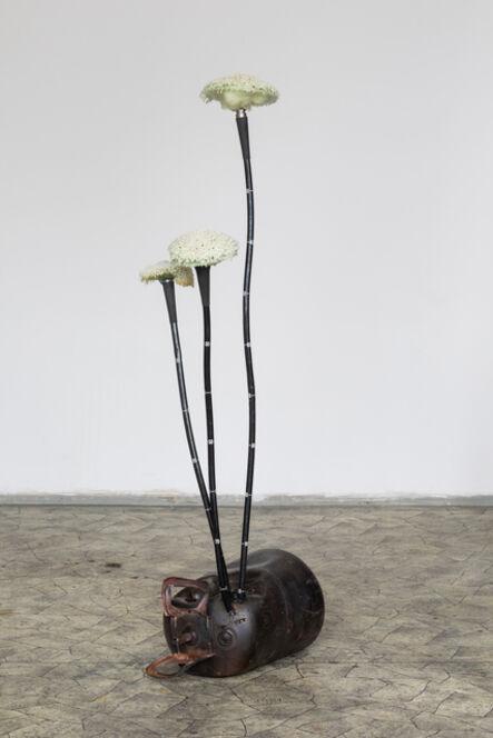 Kristof Kintera, 'Crocus Anthropocenus', 2021