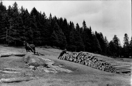 Henri Cartier-Bresson, 'Logging Operation, Quebec, Canada', 1967/1967