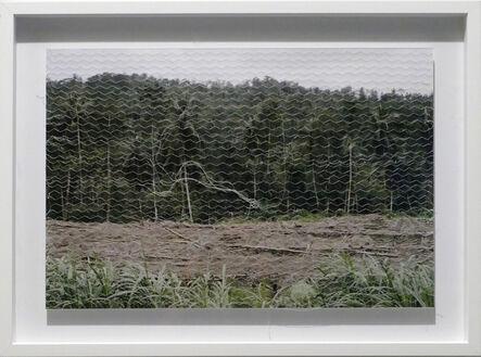 Mónica de Miranda, 'Linetrap 13', 2005