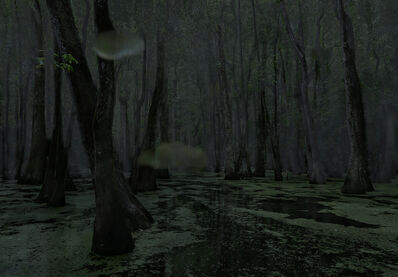 Jeanine Michna-Bales, 'Cypress Swamp, Middle Mississippi', 2014