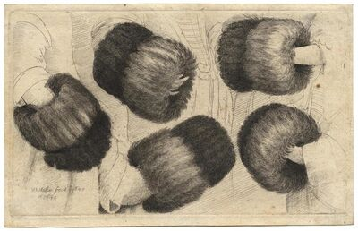 Wenceslaus Hollar, 'A Muff, seen from five different perspectives  ', 1646