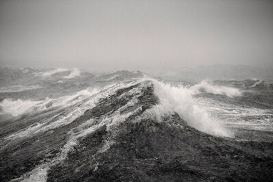 Sebastian Copeland, 'The Wave', 2013