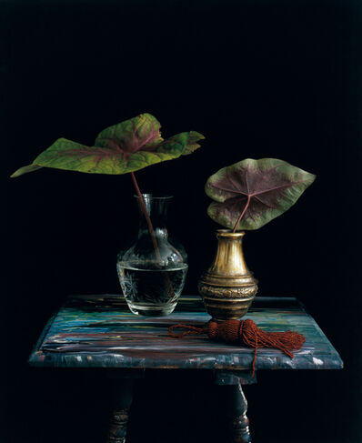 Michael James O'Brien, 'Still Life with a Red Tassel, NYC, n.d.', 2012