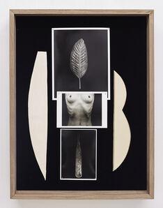 Sheree Hovsepian, 'Daybook', 2020
