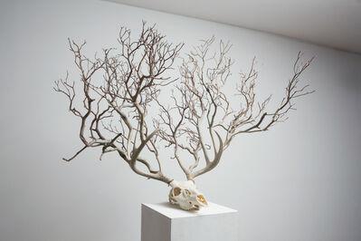 Myeongbeom Kim, 'Untitled', 2014