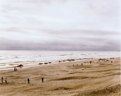 Joel Sternfeld, 'Approximately 17 of 41 Sperm Whales Which Beached and Subsequently Died, Florence, Oregon, June', 1979