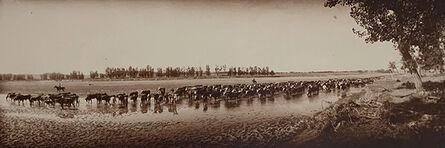 Laton Alton Huffman, 'Throwing the Herd on Water', ca. 1900
