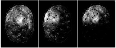 Eric Bourret, 'Moon - France ', 2001