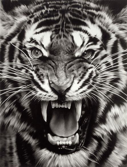 Robert Longo, 'Untitled (Roaring Tiger Print)', 2015