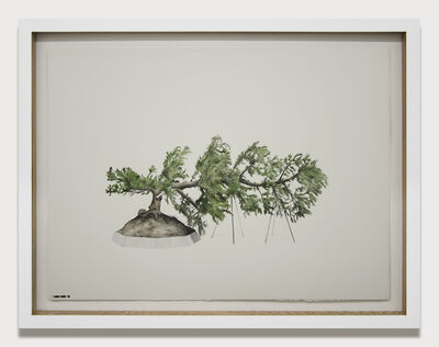 Edwin Monsalve, 'Prototipos para una naturaleza rehabilitada (3.2)', 2014