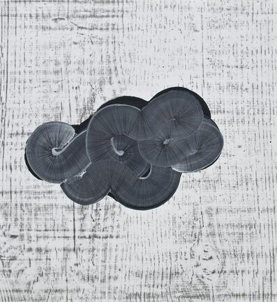 Alyse Rosner, 'With woodgrain (bundle)', 2008