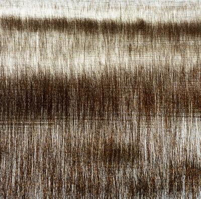 Bill Jackson, 'Texture of the Shallows', 2015