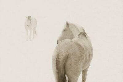 Jack Spencer, 'Snow Ponies #2, Truchas, NM', 2006