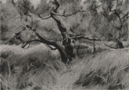 Connie Hayes, 'Orchard #2'
