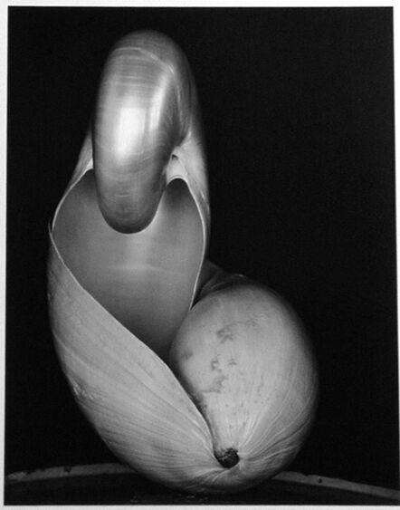 Edward Weston, '14S ~ Two Shells', 1927