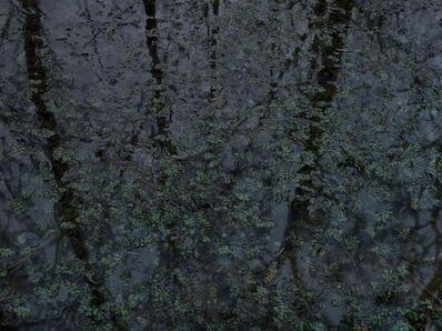Michael Lange, 'FLUSS R0054', 2012