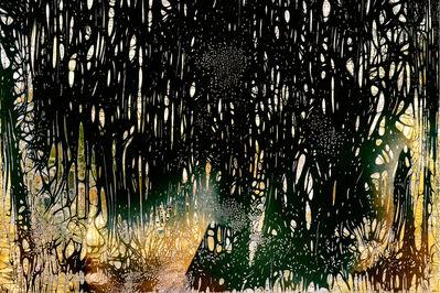 Nolan Preece, 'Forest (edition of 10)', 2016