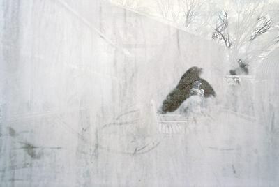 Rebecca Norris Webb, 'Highland Park Conservatory, Rochester, New York', 2013