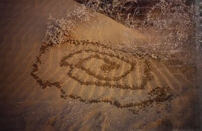 Gabriel Orozco, 'Spiral Pi Pi', 2005