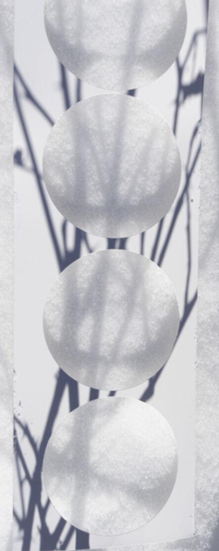 Brenda Biondo, 'Shadow Legacy no. 15', 2020