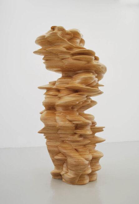 Tony Cragg, 'It is, it isn't', 2010