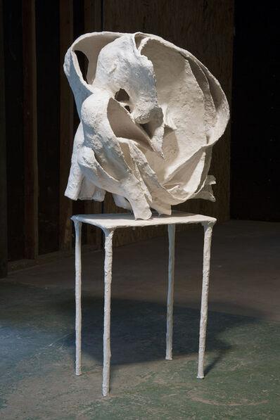 Juliana Cerqueira Leite, 'Curl 1', 2013