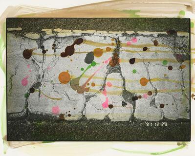Masahisa Fukase, 'Hibi 56', 1990-1992