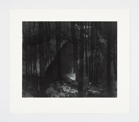 Matt Saunders, 'Landscape II (Dark Forest)', 2015
