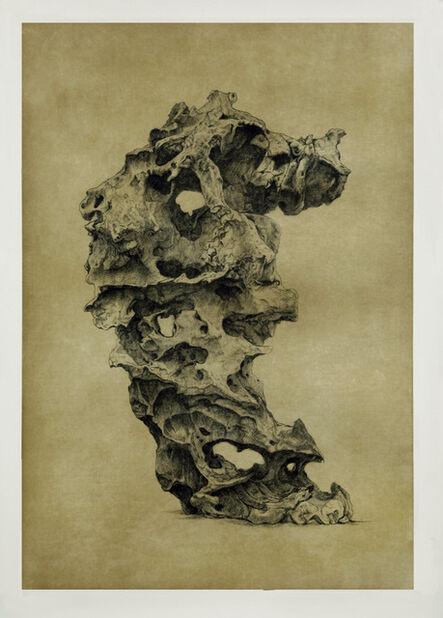 Shao Yinong & Mu Chen 邵逸农 & 慕辰, 'Objects of Nature - Langqiong', 2014