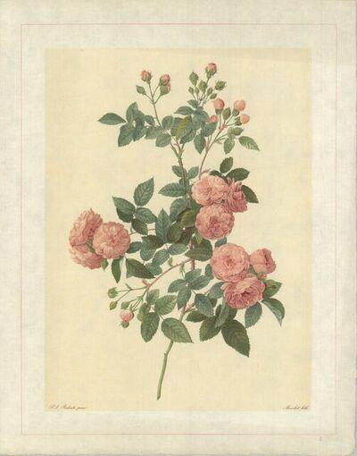 Pierre Joseph Redouté, 'Rosa Multiflora Carnea; Rosier du Japon � fleurs carnees', 1938