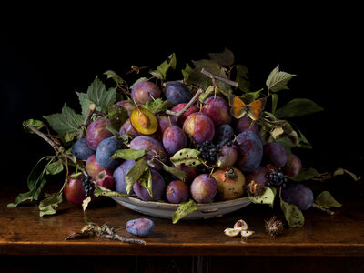Paulette Tavormina, 'Italian Plums, After GG (from the series Natura Morta), 2015', 2015