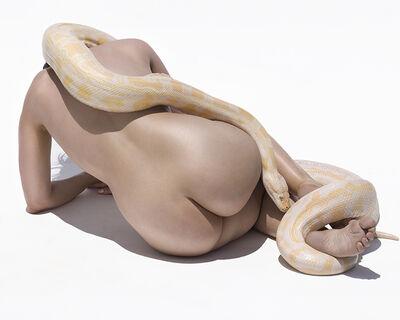 Sylvie Blum, 'Python II', 2017