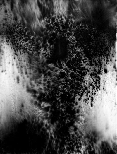 Julia Bornefeld, 'Morphic fields', 2018