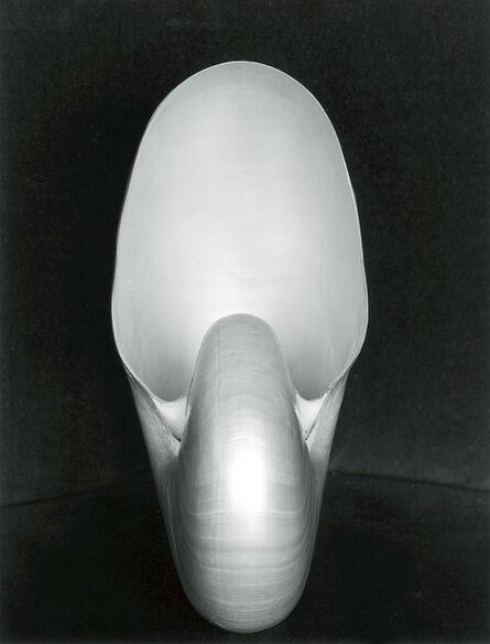 Edward Weston, 'Shell ~ 1S', 1927