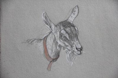 Patricia Traub, 'Goat with Orange Collar', 2018