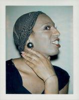 Andy Warhol, 'Ladies and Gentlemen (Wilhelmina Ross)', 1974