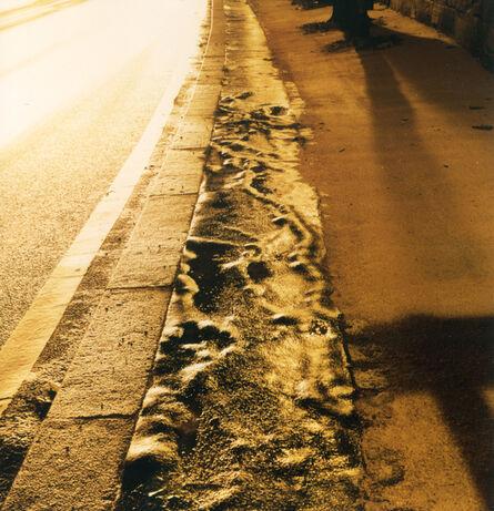 Rut Blees Luxemburg, 'The Veins, Paris', 2000/2021