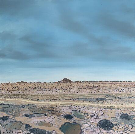Bruce Backhouse, 'Karoo Preserved Series Square Nine', 2013