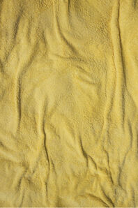 Niloufar Banisadr, 'Empreinte (The Imprint) Yellow n°3',  2010