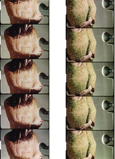 Teresa Murak, 'Lady's Smock', 2014