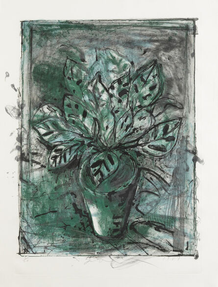 Jim Dine, 'The Jerusalem Plant #8 (D'Oench & Feinberg 176)', 1984