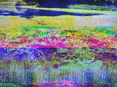 Sonya Roerich, 'Point Reyes Lake', 2014