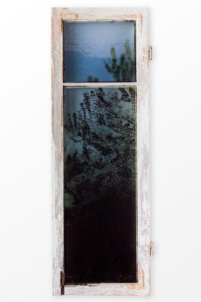 Augustas Serapinas, 'Tree fragment from Matūkai', 2018